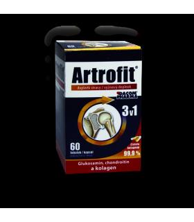 Artrofit 60 tabliet